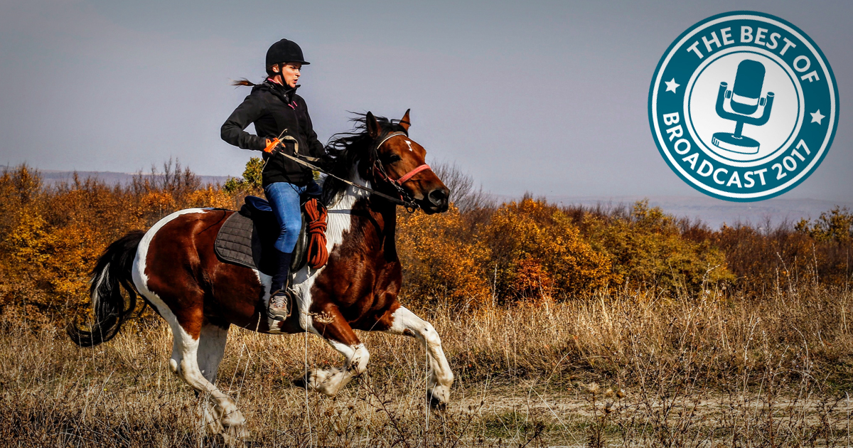Bringing Hope And Healing Through Rescued Horses Part Ii